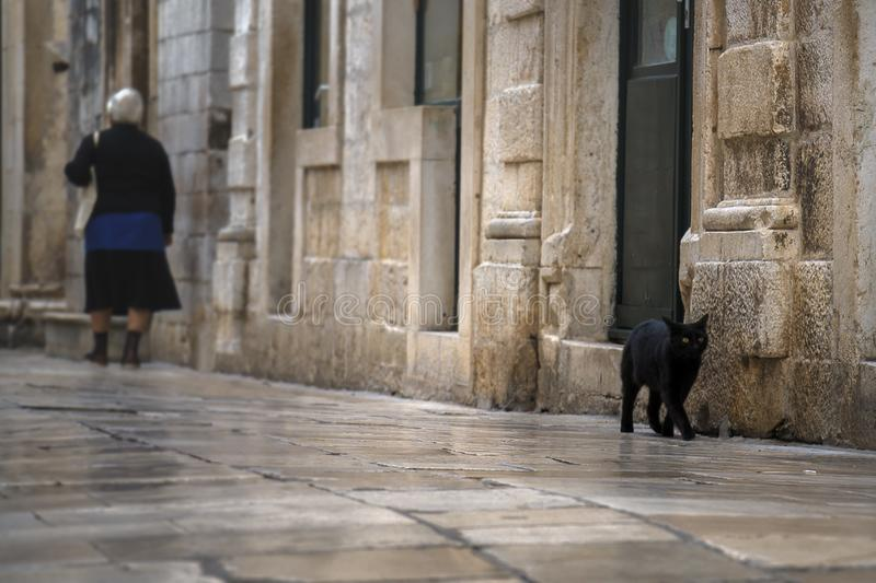 Dubrovnik, Croatia - October 10, 2019: Alley black cat and elderly woman walking alone by the street stock image