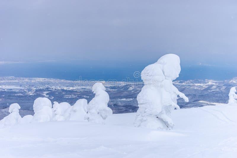 Ducha de nieve en monstruo de la nieve en Hakkoda, Aomori, Japón fotografía de archivo