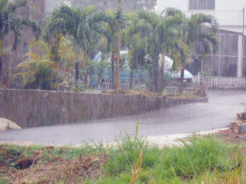 Duchas de Rainyday de la lluvia imágenes de archivo libres de regalías