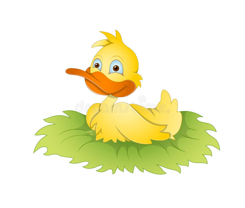 Duck royalty free illustration