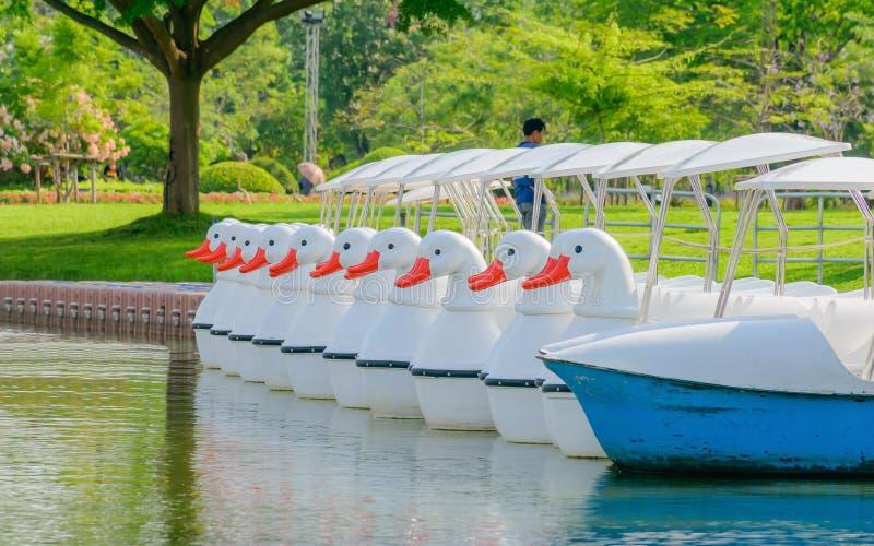 Duck Boat stock fotografie