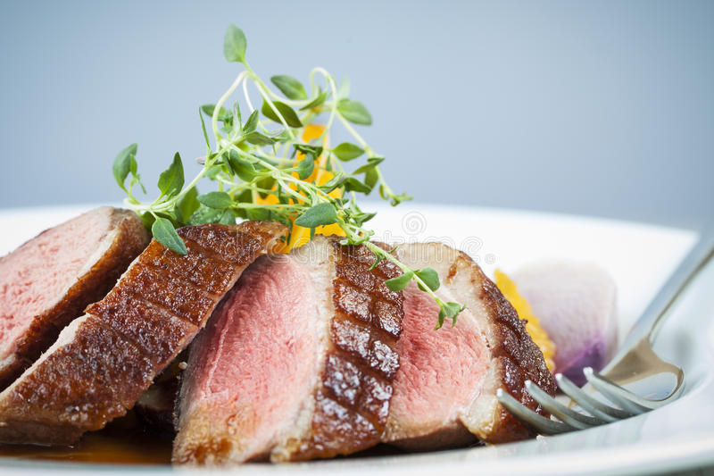 Download Duck Breast stock image. Image of delicious, meat, garnish - 34425999