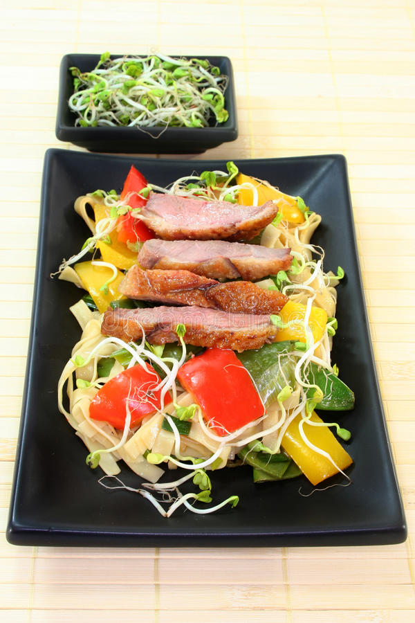 Download Duck Breast With Fried Noodles Stock Image - Image: 18021471