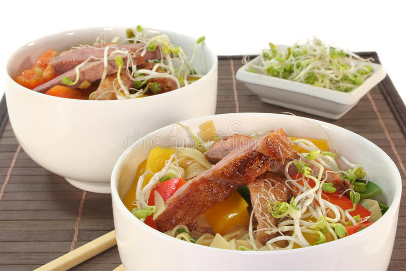 Download Duck Breast With Fried Noodles Stock Image - Image: 18673519