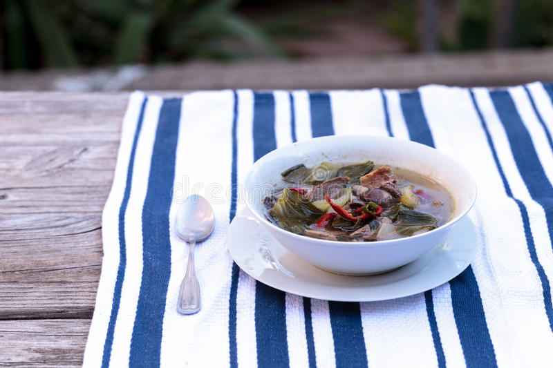 Duck breast soup. With organic basil spice, portabella mushrooms, cilantro, red jalapeno pepper, green Chinese bok choy, green onion and ginger on a white and stock images
