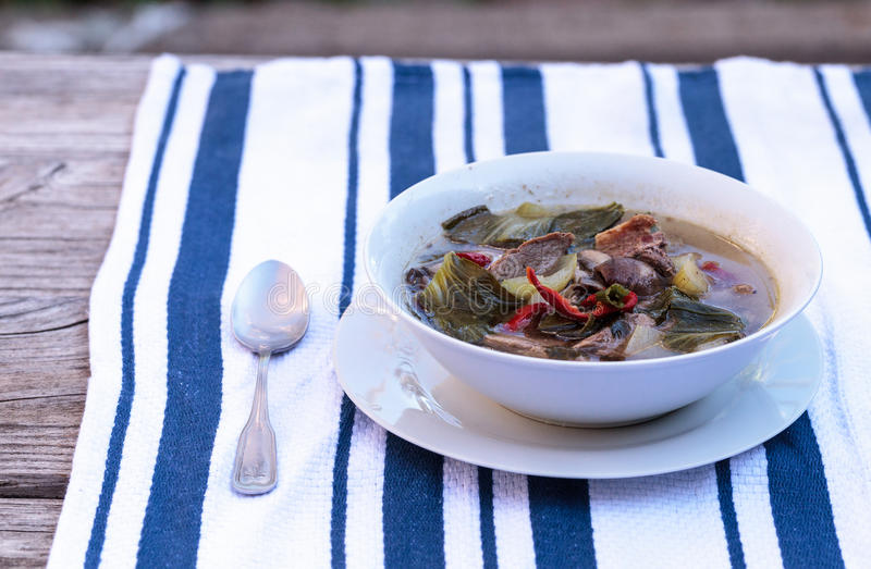 Duck breast soup with organic vegetables. Duck breast soup with organic basil spice, portabella mushrooms, cilantro, red jalapeno pepper, green Chinese bok choy royalty free stock images
