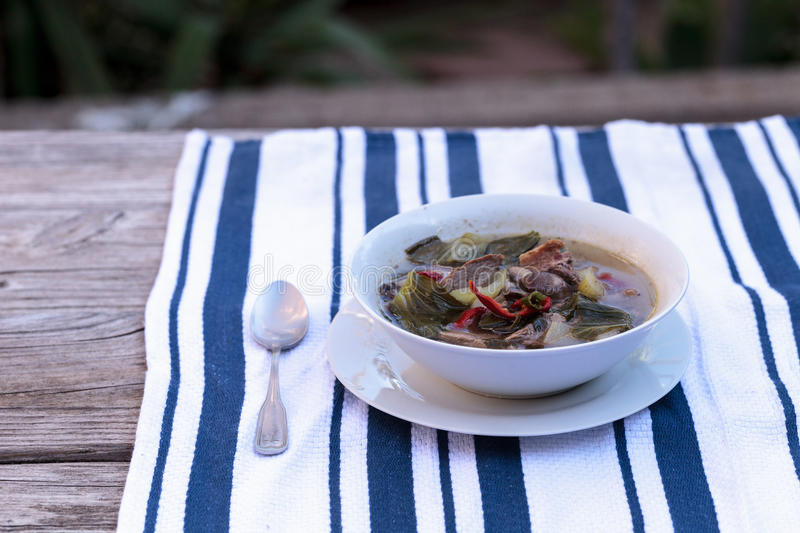 Duck breast soup with organic vegetables. Duck breast soup with organic basil spice, portabella mushrooms, cilantro, red jalapeno pepper, green Chinese bok choy royalty free stock photography