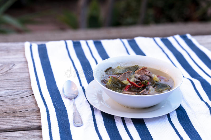 Duck breast soup with organic vegetables. Duck breast soup with organic basil spice, portabella mushrooms, cilantro, red jalapeno pepper, green Chinese bok choy stock photography