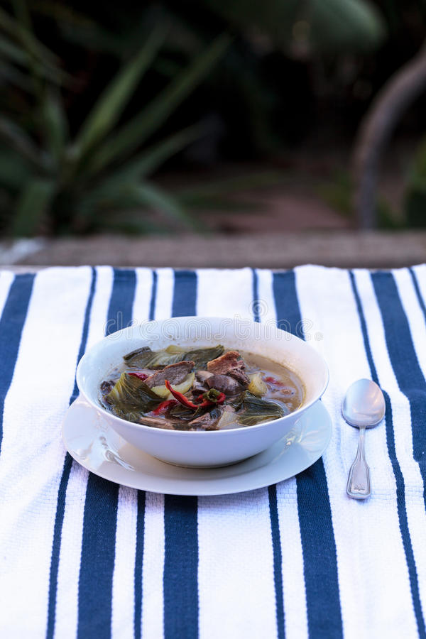 Duck breast soup with organic vegetables. Duck breast soup with organic basil spice, portabella mushrooms, cilantro, red jalapeno pepper, green Chinese bok choy stock images