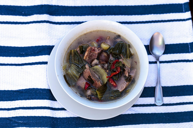 Duck breast soup with organic vegetables. Duck breast soup with organic basil spice, portabella mushrooms, cilantro, red jalapeno pepper, green Chinese bok choy royalty free stock photos