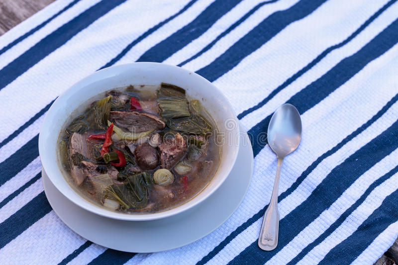 Duck breast soup with organic vegetables. Duck breast soup with organic basil spice, portabella mushrooms, cilantro, red jalapeno pepper, green Chinese bok choy stock image