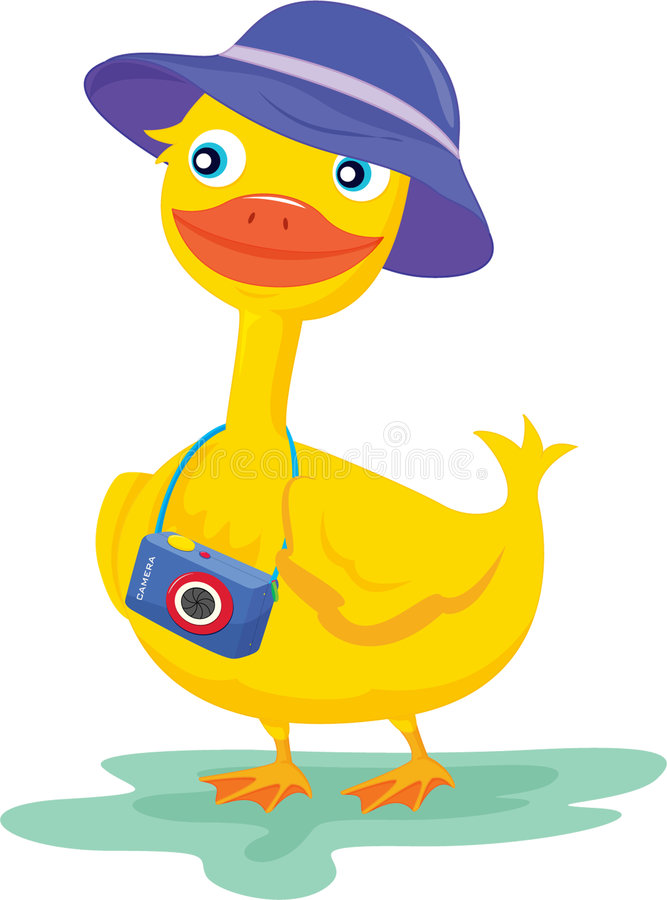 A duck with a camera stock illustration