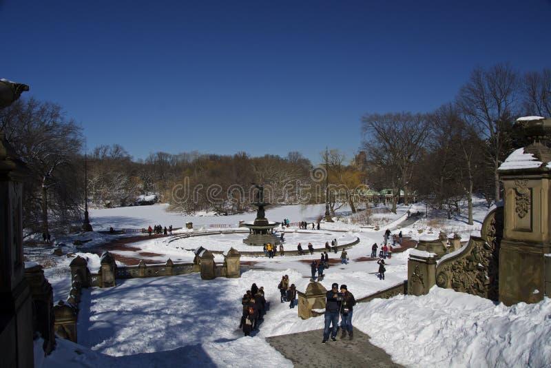 Duck Central Park, New York, neve ed inverno immagine stock libera da diritti