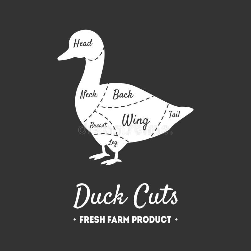 Duck Cuts, produit de la ferme frais, volaille avec des lignes de coupes de viande, boucher Shop Label, vecteur noir et blanc de  illustration de vecteur