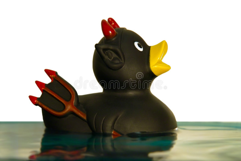 The Duck of Death royalty free stock photography