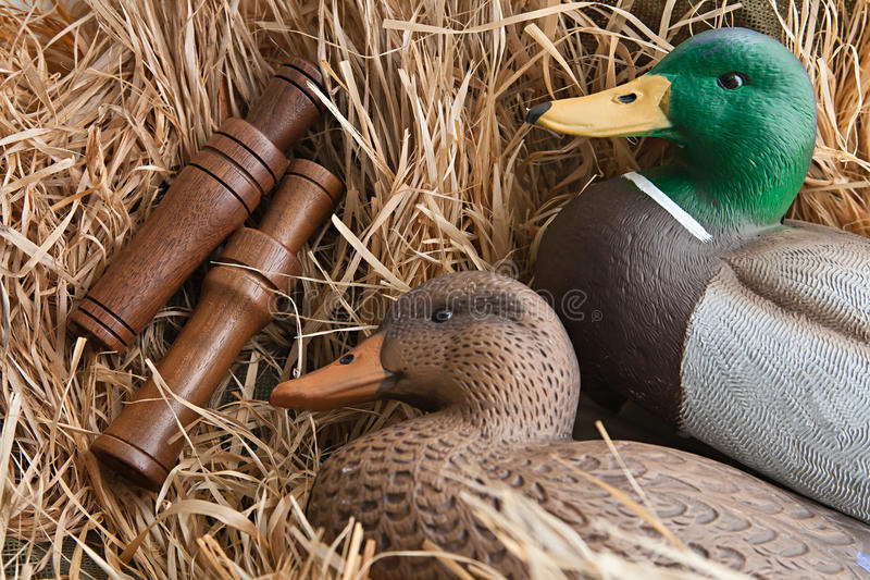 Duck decoy with stuffed and calls. Duck decoy with stuffed and some calls royalty free stock photo