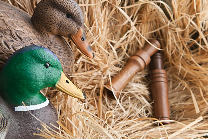 Duck decoy with stuffed and calls. Duck decoy with stuffed and some calls stock photo