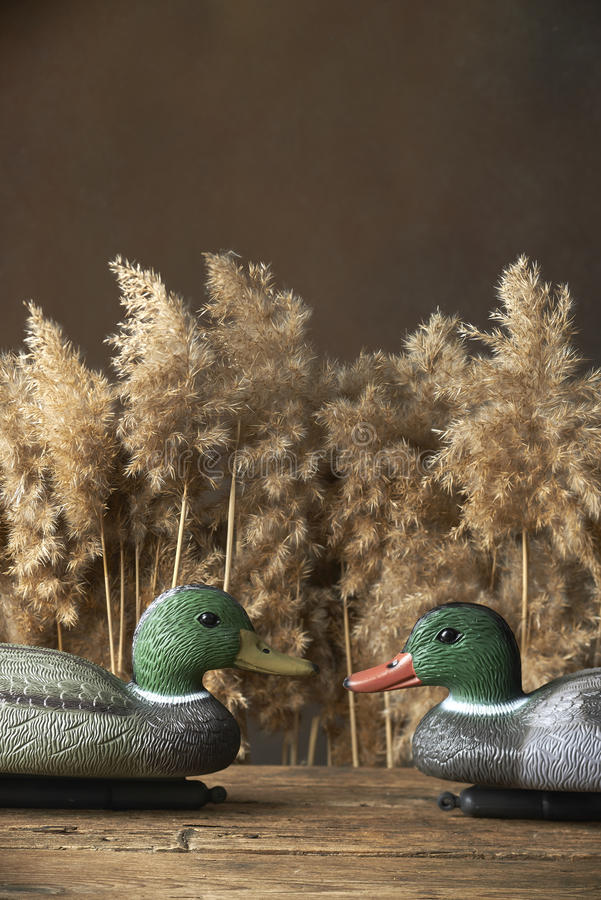 Duck decoys and whistles. For birds in the reeds stock image