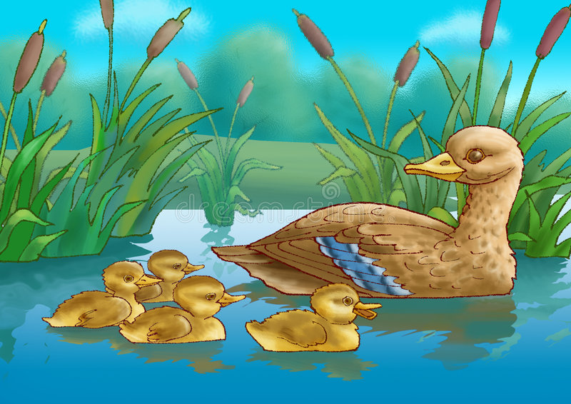 Download Duck and duckling stock illustration. Image of cattail - 7937179