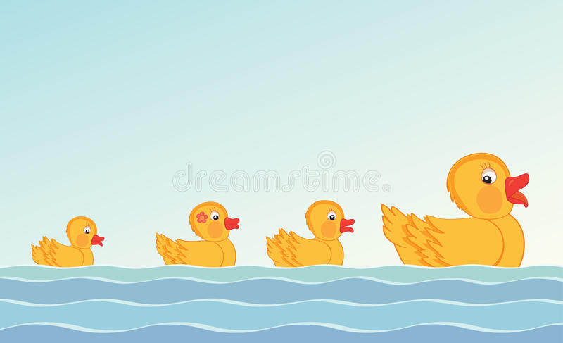 Duck and ducklings vector illustration