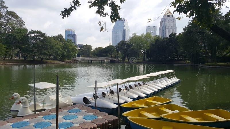 Duck el barco en el lago en el parque de Suan Lumpini imágenes de archivo libres de regalías