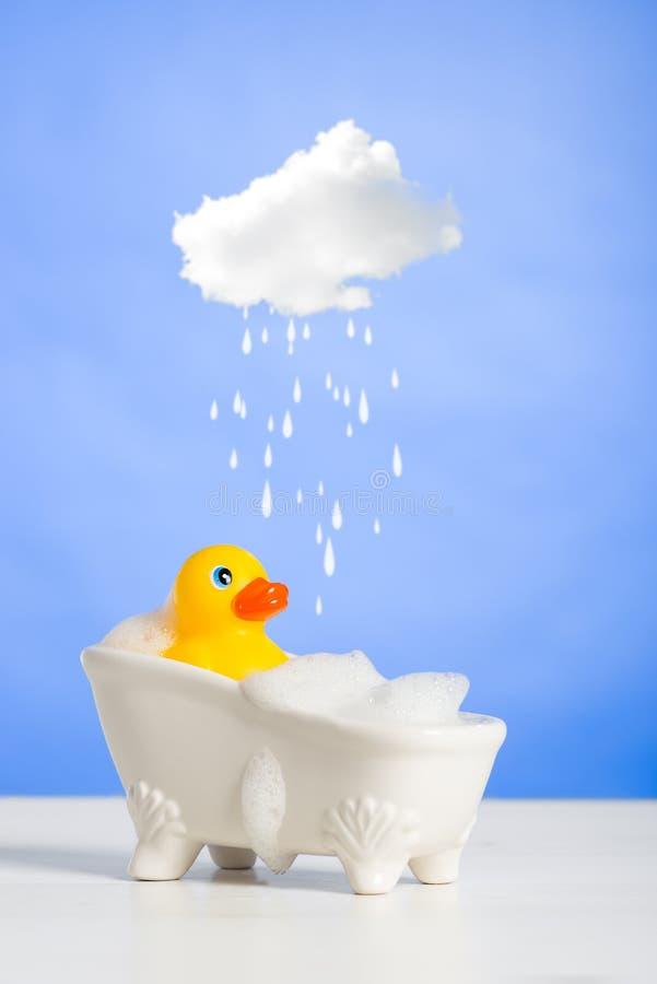 Duck Having een Bad stock fotografie