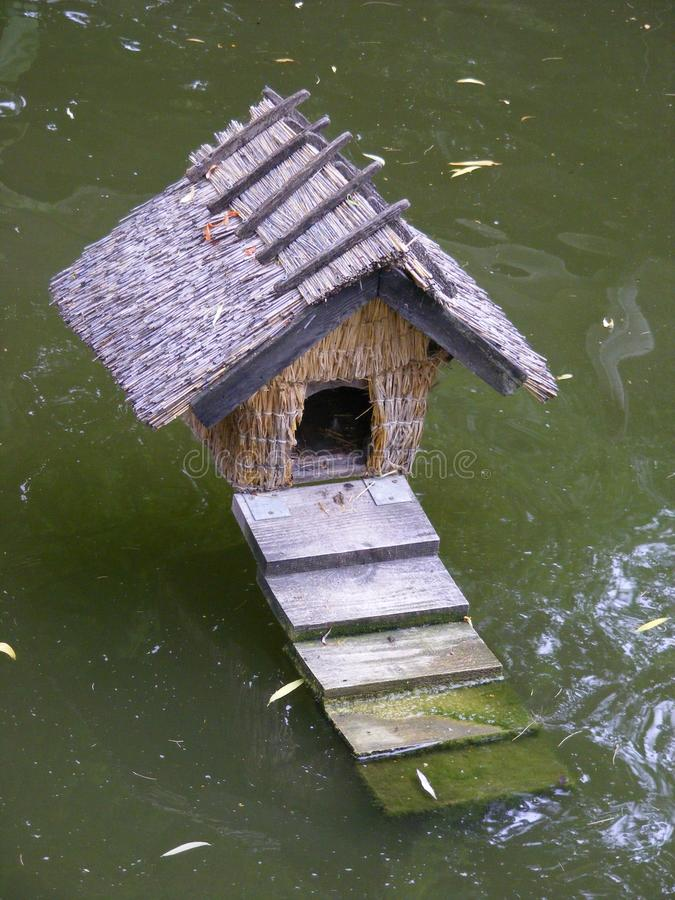 Free Duck House Royalty Free Stock Image - 10311356