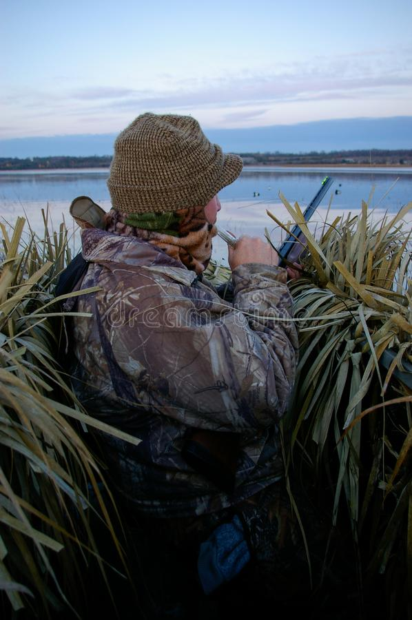 Duck Hunter In Blind Working en appell royaltyfri bild