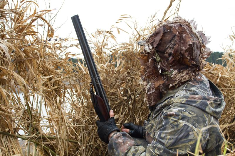 Duck hunter looks out of the hunting blind stock image
