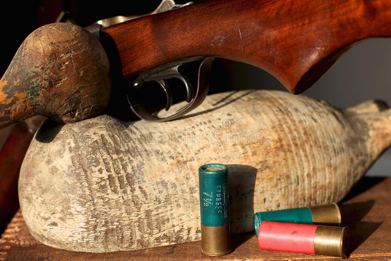 Duck Hunts of the Distant Past. Wooden duck decoy and an antique shotgun royalty free stock image