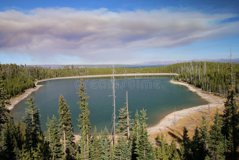 Duck Lake Yellowstone National Park arkivfoto