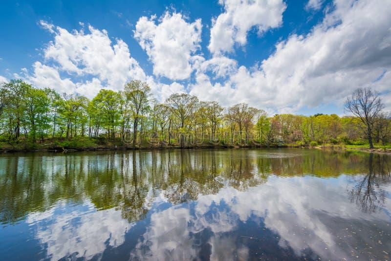 Duck Pond en el parque de Edgewood en New Haven, Connecticut imagenes de archivo