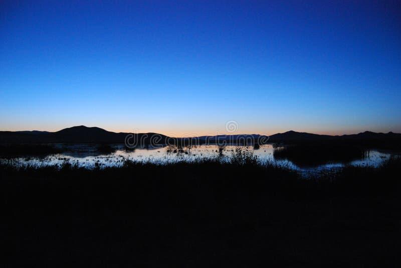 Duck Pond en la salida del sol fotos de archivo libres de regalías