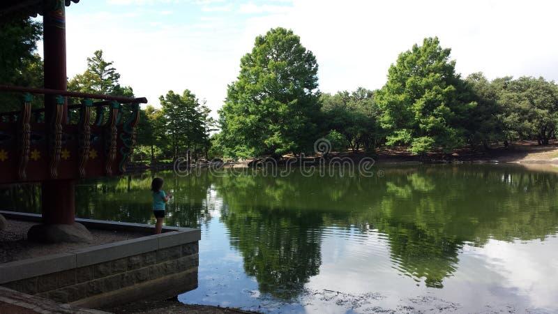 The Duck Pond stock photos