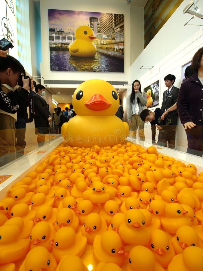 Duck Project de goma en Hong Kong fotografía de archivo