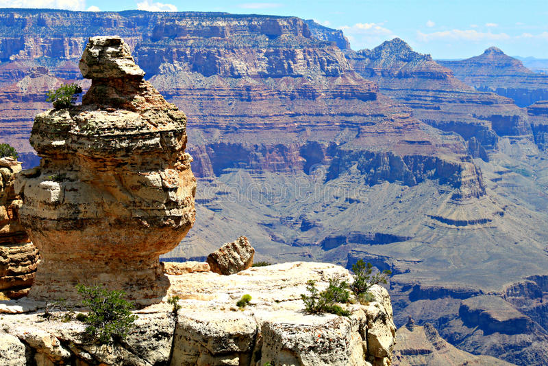 Duck on a Rock, Grand Canyon, AZ stock image