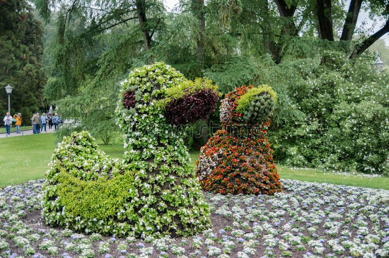 Duck Sculptures, feito pela flor de florescência Ilha Mainau fotografia de stock