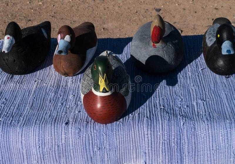 This duck stands out from the crowd. It is good to be differant and stand out from the rest usa background bird close-up craft crafted decoration decorative stock image