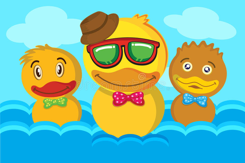 Duck Swimming arkivfoton
