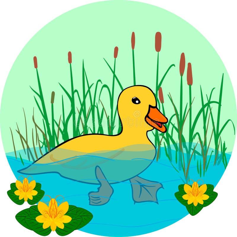Ducka i sjön som simmar i vattnet vektor illustrationer