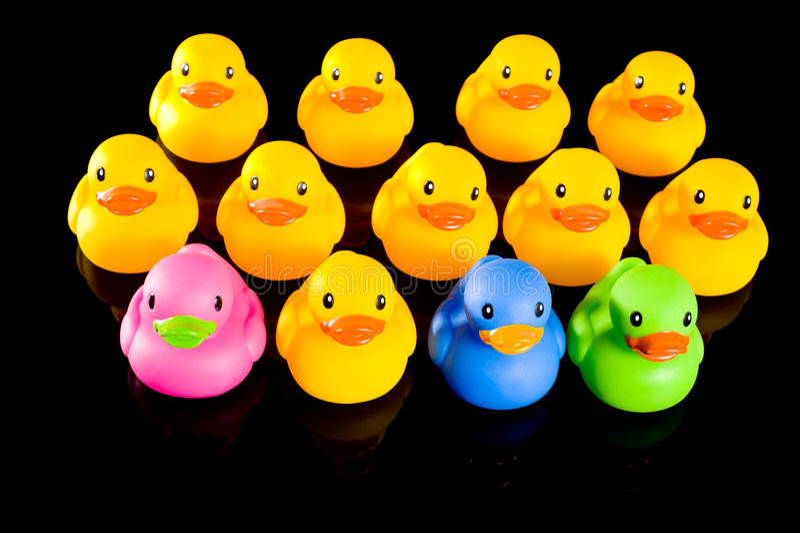 duckar gummi royaltyfri foto
