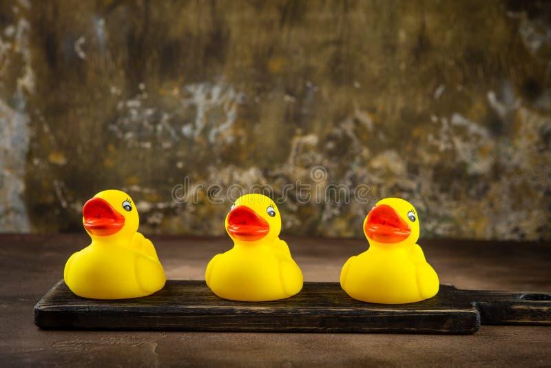 duckar gummiyellow royaltyfri bild