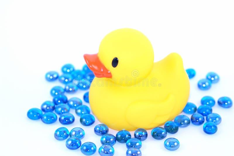 duckie bathtime стоковые фото