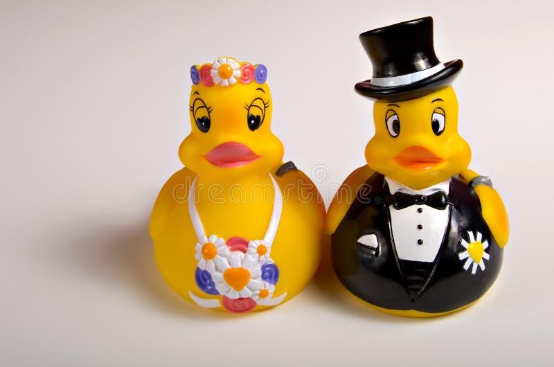Duckies da noiva e do noivo imagens de stock royalty free