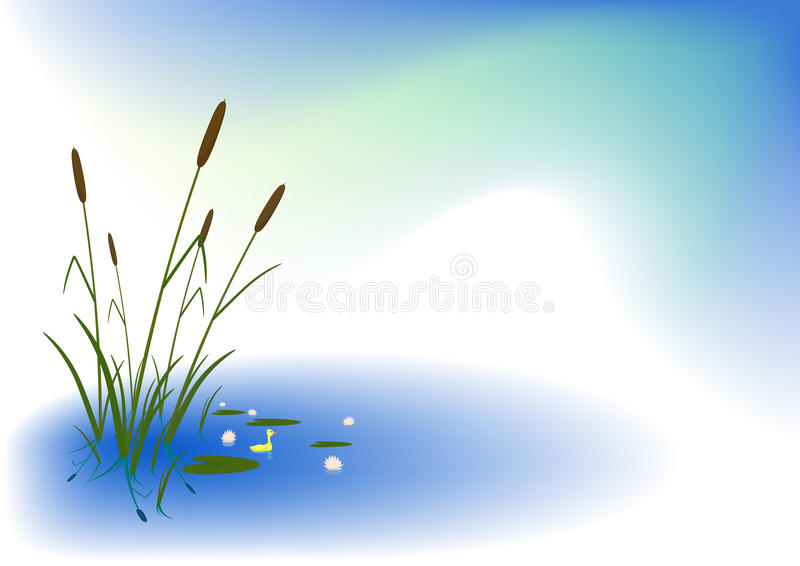Download Duckling Among White Lilies Stock Vector - Image: 21432281