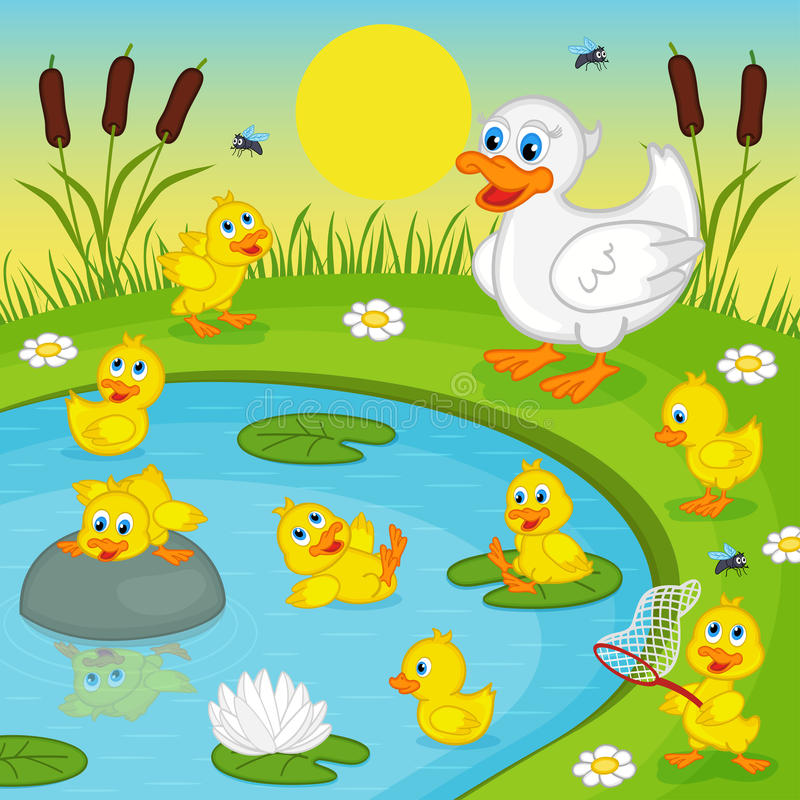 Ducklings with mother duck playing in lake. Vector illustration, eps vector illustration
