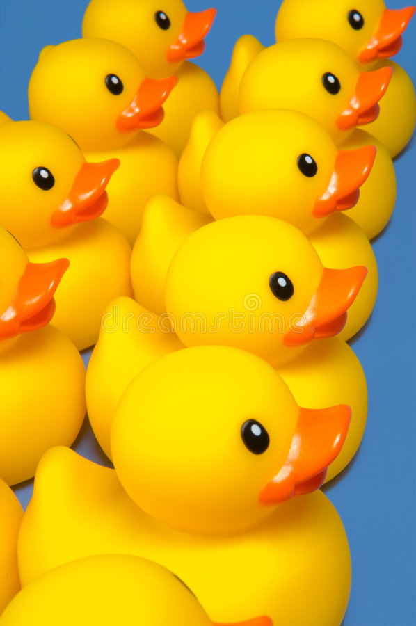 Free Ducks In A Row Stock Image - 4534781