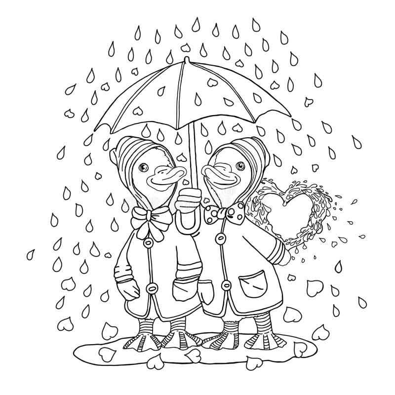 Ducks in love under a rain of hearts. Sketch vector illustration