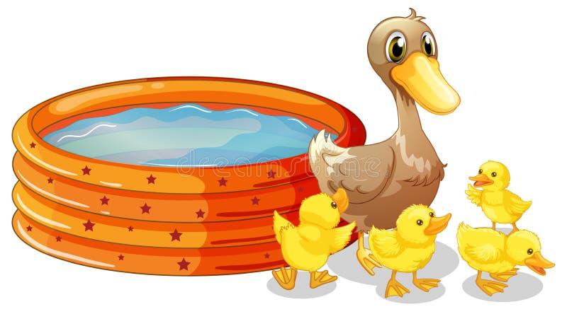 Paddling Pool Stock Illustrations – 50 Paddling Pool Stock ...