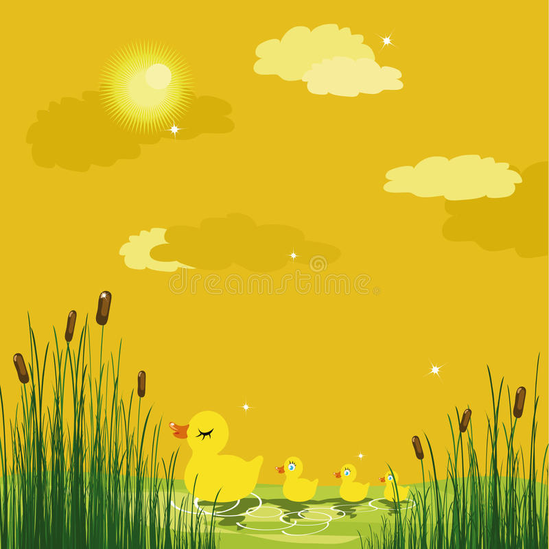Download Ducks in a pond stock vector. Image of contour, birds - 10879001
